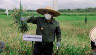 Permalink ke Bahtiar: Sektor Pertanian, Peternakan dan Perikanan Jadi Solusi di Masa Pandemi