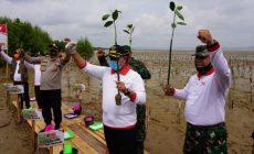 Permalink ke Bupati Askolani Ajak Semua Pihak Jaga Mangrove Banyuasin Sebagai Paru-Paru Dunia