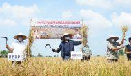 Permalink ke Herman Deru Jadikan Banyuasin Food Estate Penyangga Ketahanan Pangan Nasional