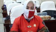 Permalink ke Wiwin Andaini: Muswil PKB Sumsel dan DPC Lahat Pererat Silaturahmi